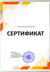 Частный программист 1с не в москве управление торговлей 1с 8.2 редакция 11 внедрение и применение